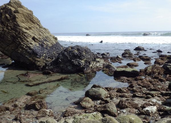 La Piedra Tide Pool