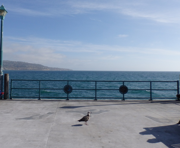 Pier View towards Palos Verdes