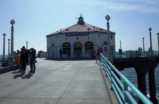 Roundhouse Aquarium Manhattan Beach
