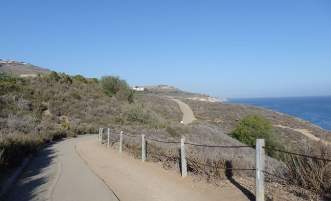 Catalina Trail View