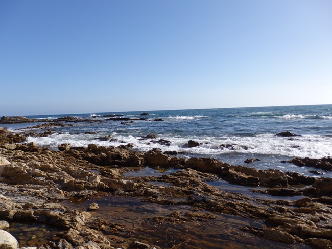 Tide Pools at White Point